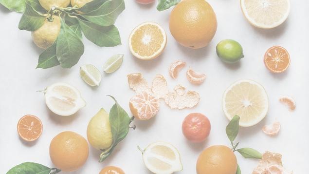Des agrumes (citrons, oranges, clémentines, limes) sont étalés sur un fond blanc.