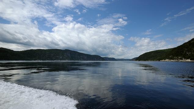 Vue du fjord du Saguenay