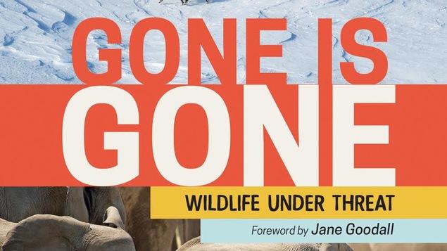 On voit des éléphants et des caribous sur la couverture du livre Gone is Gone.