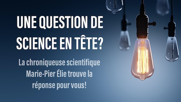 Posez vos questions de science à Marie-Pier Élie!