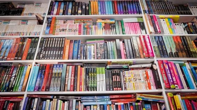 Les étagères d'un meuble bibliothèque sont remplies de livres.