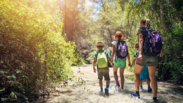 Une femme et trois enfants portant un chapeau marchent dans une rivière entourée d'arbre.