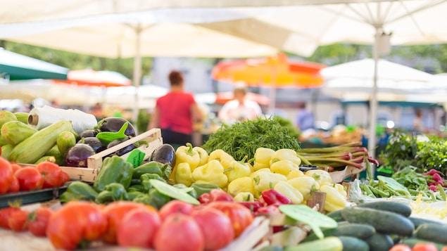 Un étal de légumes biologiques