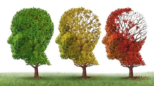 Illustration d'arbres perdant leurs feuilles pour illustrer les problèmes de démence, de perte de mémoire et la maladie d'Alzheimer.