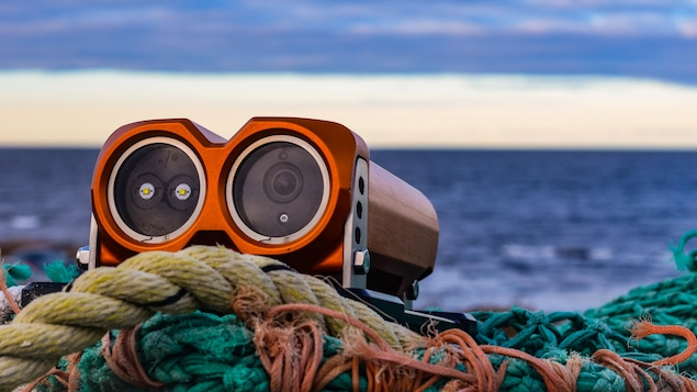 Sur des cordages, on voit une caméra sous-marine. Derrière, il y a une étendue d'eau, le fleuve Saint-Laurent.