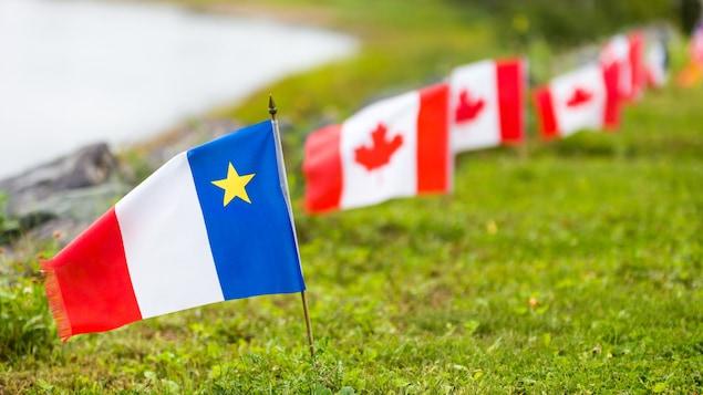 Un drapeau acadien planté dans la pelouse devant plusieurs drapeaux du Canada.