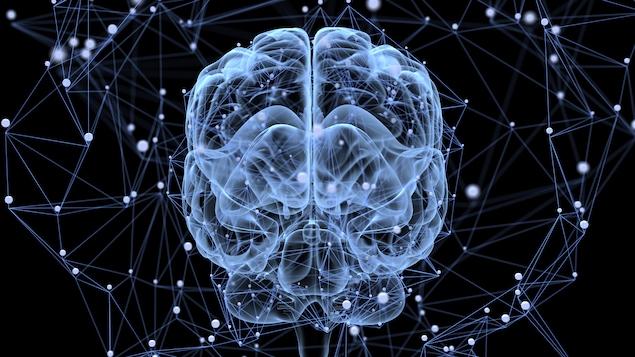 Activité cérébrale