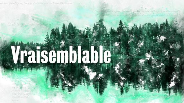 Le titre Vraisemblable sur un fond vert de forêt.