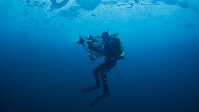 Mario Cyr en tenu de plongée sous l'eau avec une caméra