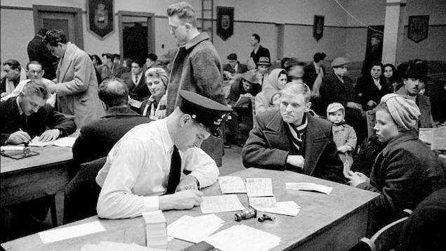 Examens des nouveaux arrivés au pays dans la salle d'examens immigration, Quai 21, Halifax (Nouvelle-Écosse), mars 1952