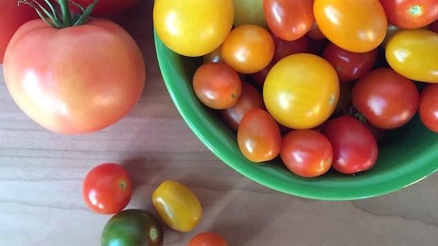 La production mondiale de tomates se chiffre à plus de 100 millions de tonnes par année.