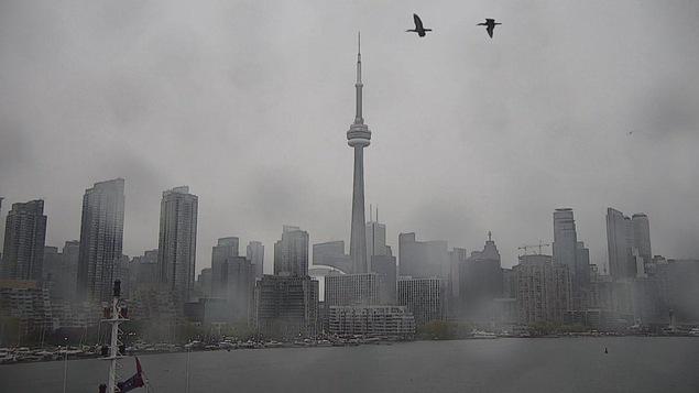 Vue du centre-ville de Toronto sous la pluie.