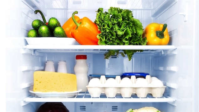 Réfrigérateur bien garni.