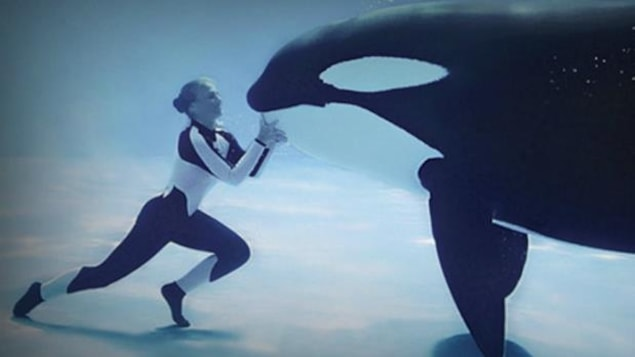 Une plongeuse avec une orque dans l'eau.