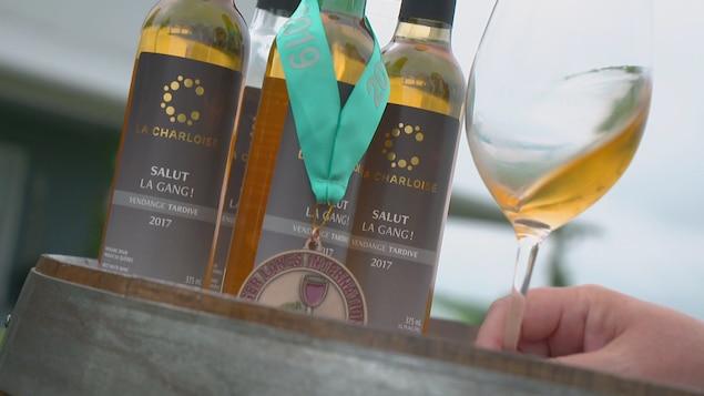 Des bouteilles de vin avec une coupe de vin