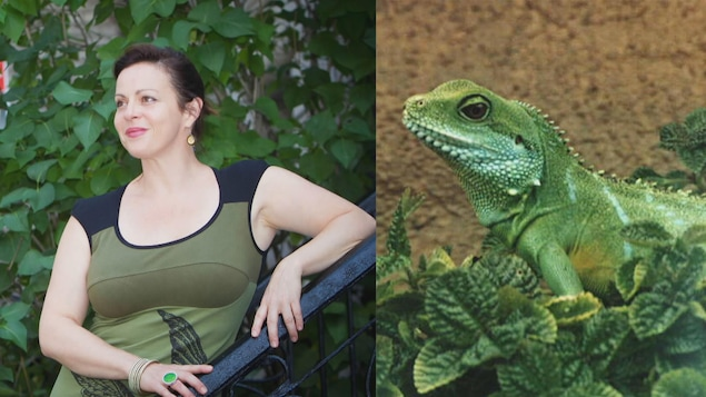 Un montage photo : Maude Guérin à gauche et son animal miroir, le dragon d'eau chinois, à droite.