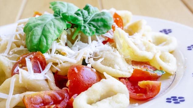 Un plat d'orecchiette aux choux-fleurs, tomates cerises et basilic.