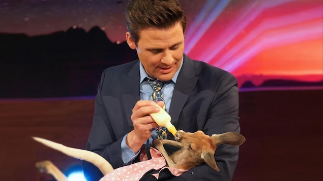 L'animateur donne un biberon de lait à l'animal enroulé dans sa petit couverture.