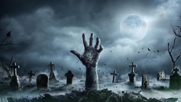 Questionnaire spécial « films de peur pour l'Halloween »
