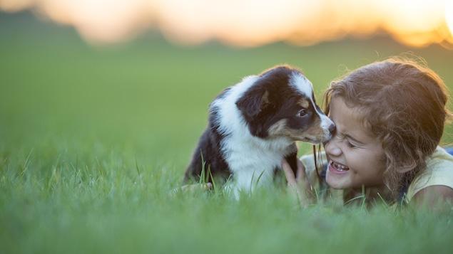Ils sont assis dans l'herbe et le chien se montre câlin.