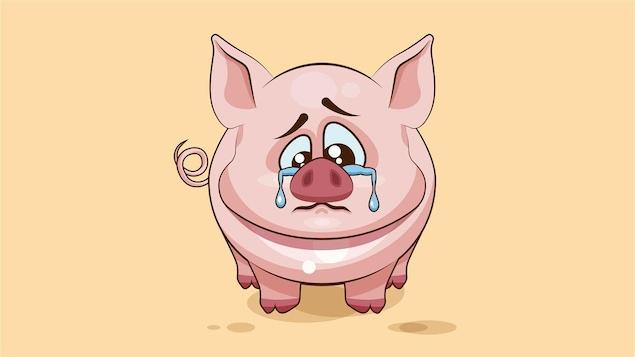Avec la Boucherie émotive, vous saurez toujours quand vous mangerez un cochon triste.