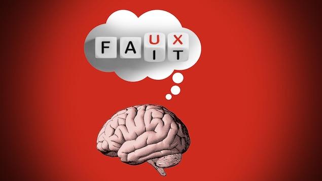 Un cerveau d'où émane un phylactère contenant quatre dés ou les lettres du mot « fait » se transforment en le mot « faux ».