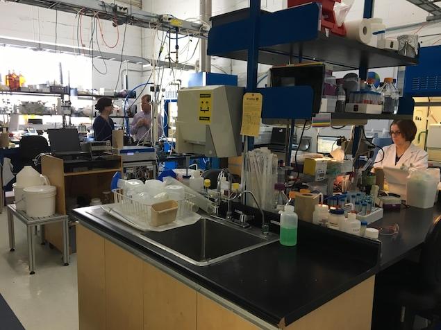 Des employés travaillent dans le laboratoire de CO2 Solutions à Québec.