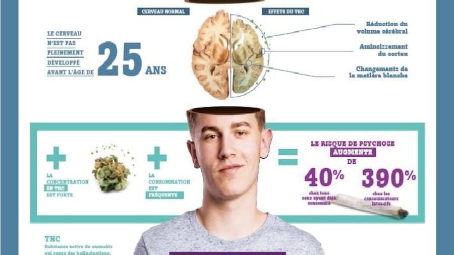 L'affiche de l'AMPQ sur les effets du cannabis sur le cerveau