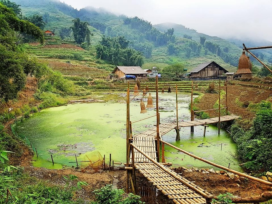 La vallée de Muong Hoa, à Sa pa, au Vietnam