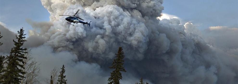 Les feux de forêt: un mal nécessaire?